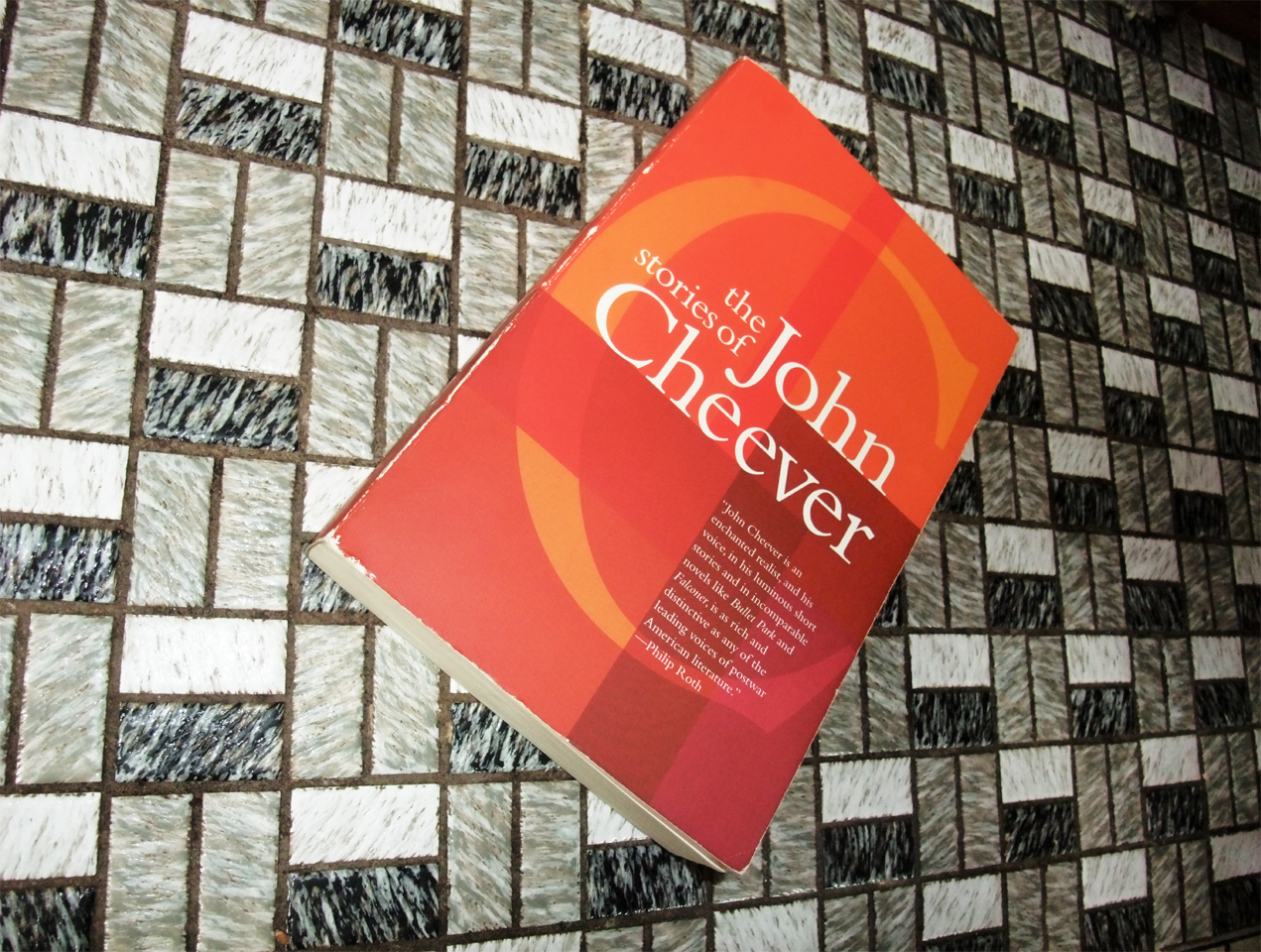 what is the theme of john cheevers short story the swimmer ? essay It would be easy to go into a lengthy essay about the achievements of  for the baseball card fan with the desire to own  80235 1948 leaf baseball short prints.