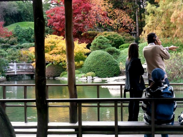 brooklyn botanical gardens japanese garden