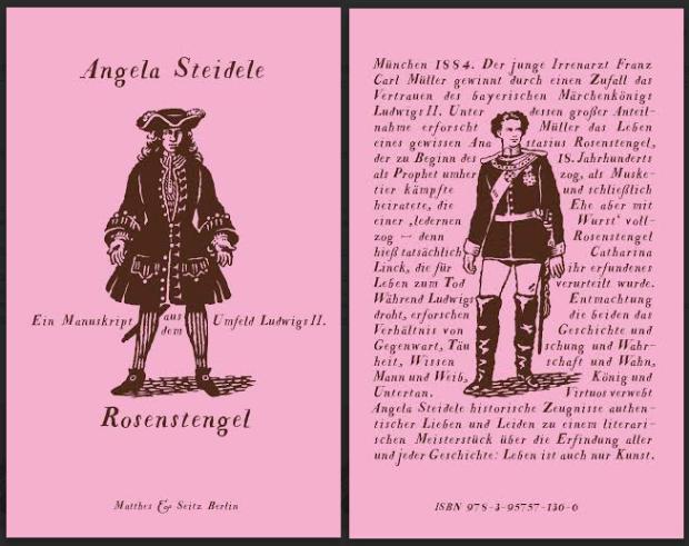 """Cover und Backcover von Angela Steideles Roman """"Rosenstengel"""", erschienen bei Matthes und Seitz"""