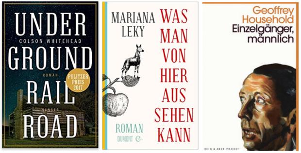 neue Bücher 2017 Colson Whitehead, Mariana Leky, Geoffrey Household.png
