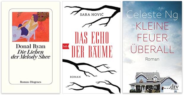 neue Bücher 2018 Donal Ryan, Sara Novic, Celeste Ng