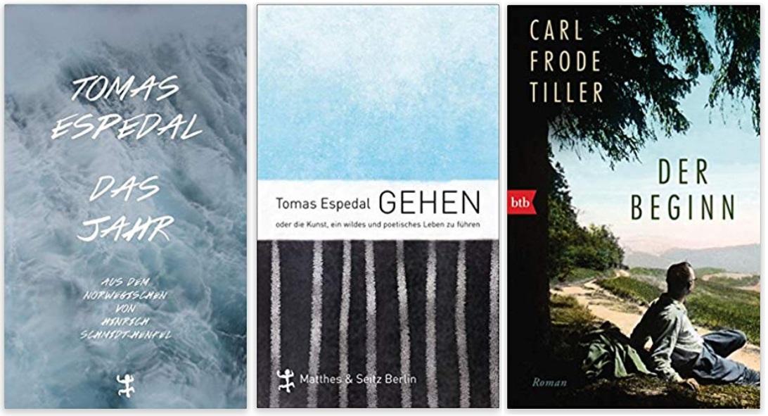05 Norwegen Gastland Ehrengast Frankfurter Buchmesse 2019 - Tomas Espedal Das Jahr, Tomas Espedal Gehen, Carl Frode Tiller Der Beginn
