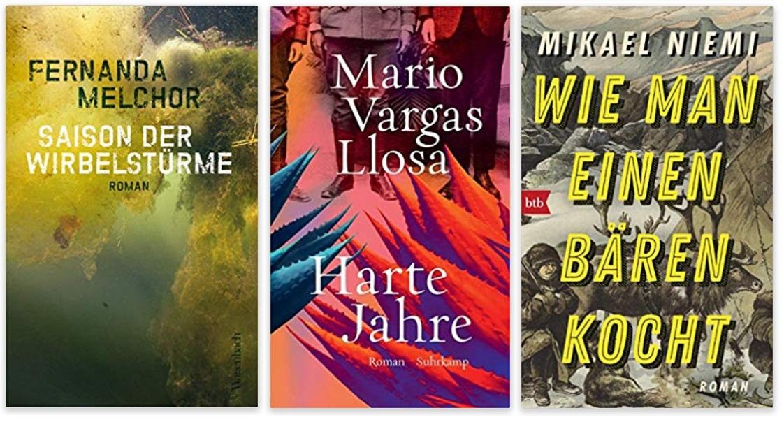 23 2020 Bücher des Jahres, Romane des Jahres - Fernanda Melchor, Mario Vargas Llosa, Mikael Niemi